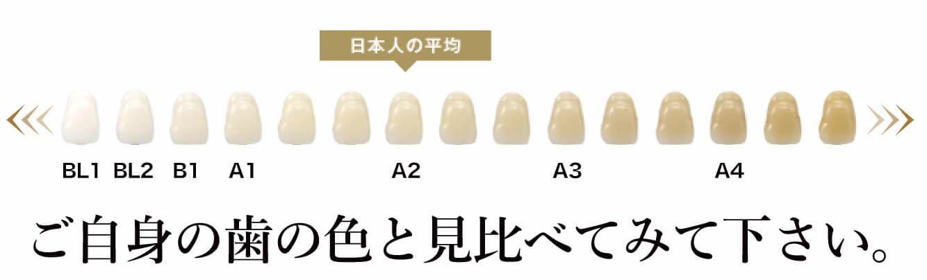 歯の色シェードガイド